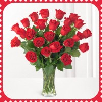 FR24 24 Red Roses with vase