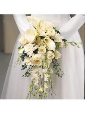 Weddings & 15th BDays