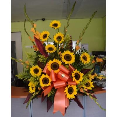 PD50 Sunflower Arrangement