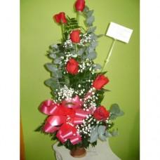 AR0020 6 Roses