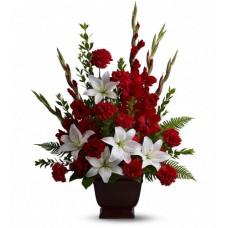 CL45 Splendid Red White