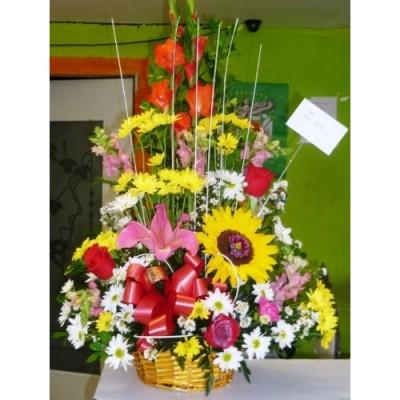 AP04 Sunflower Spring Flowers