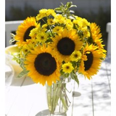 GF0035 Sunflowers in Vase