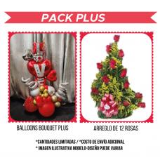 SV02 Pack Plus
