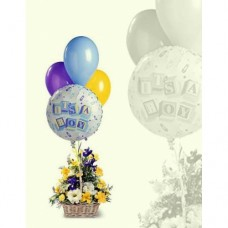 AN42 Boy Balloons and Flowers